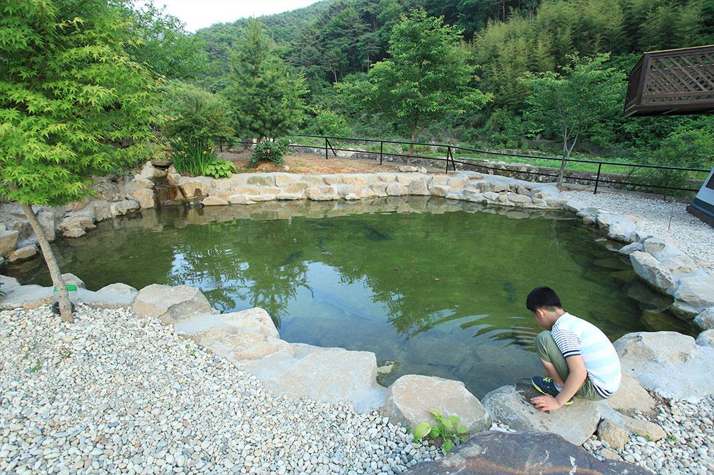 철갑상어연못